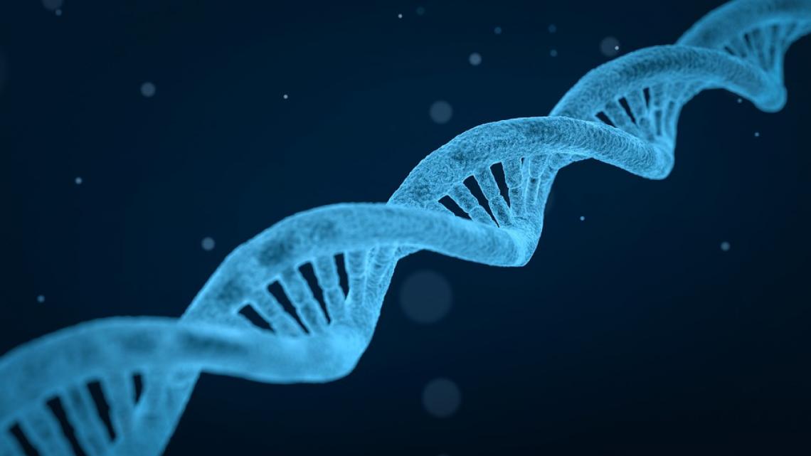 genomics-and-bioinformatics-icon.png